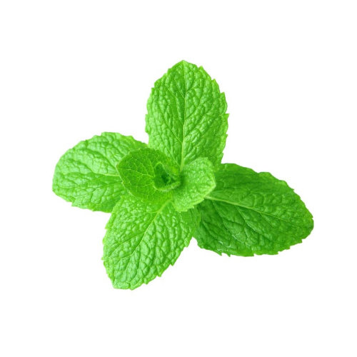 Эфирное масло садовой мяты / SPEARMINT ESSENTIAL OIL